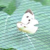 Soft Butterfly Netting for garden
